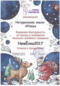 Наша компания приняла участие в грандиозном мероприятии «NewЁлка 2017»